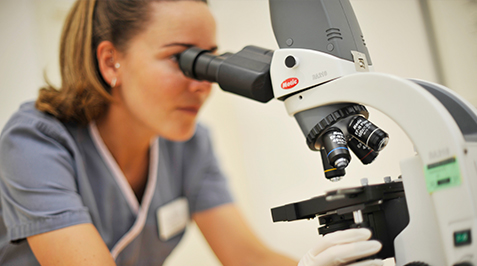 In-house laboratory/ microscope